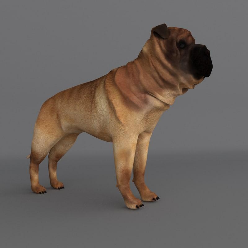 Pei Rating: 3d Ori Pei Dog Model