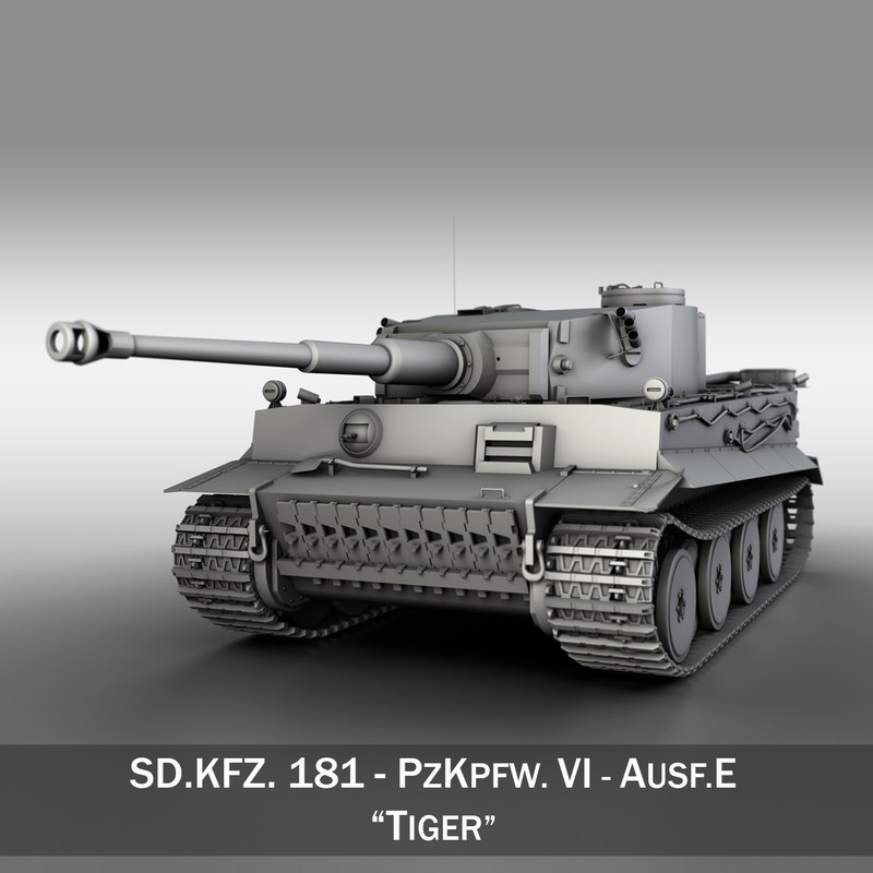 TigerE 01.jpg