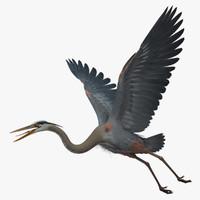 heron 3D models