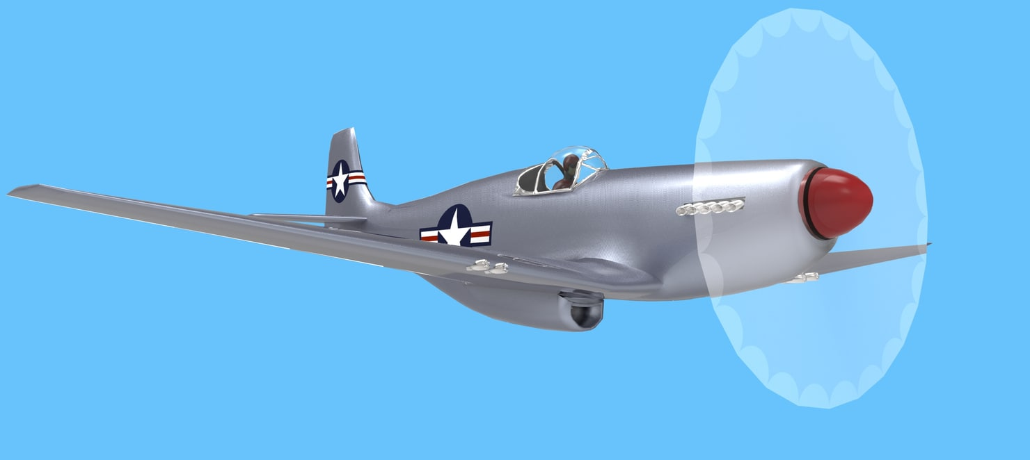 MustangP-51 fly.474.jpg