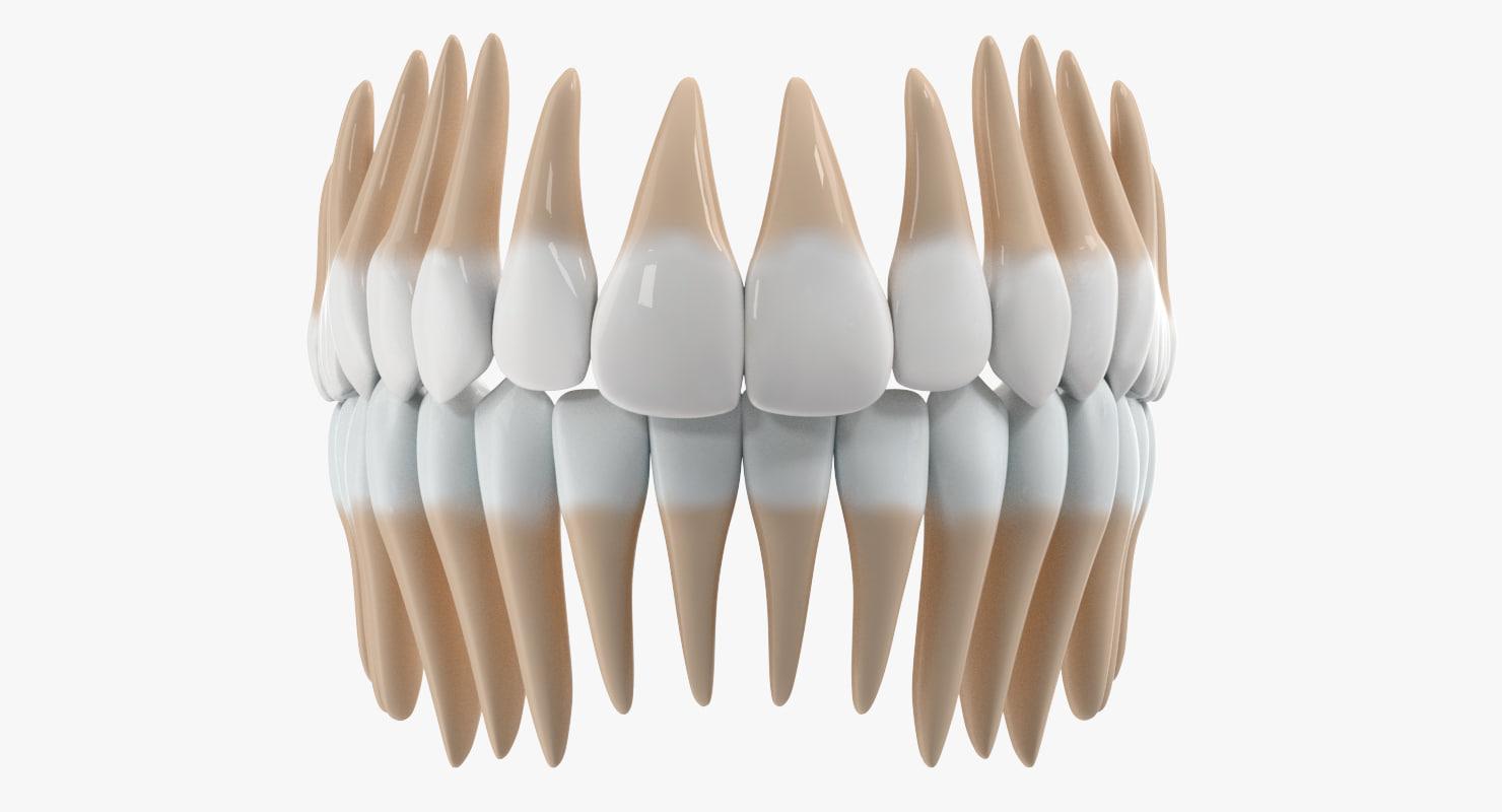 Teeth_001.jpg