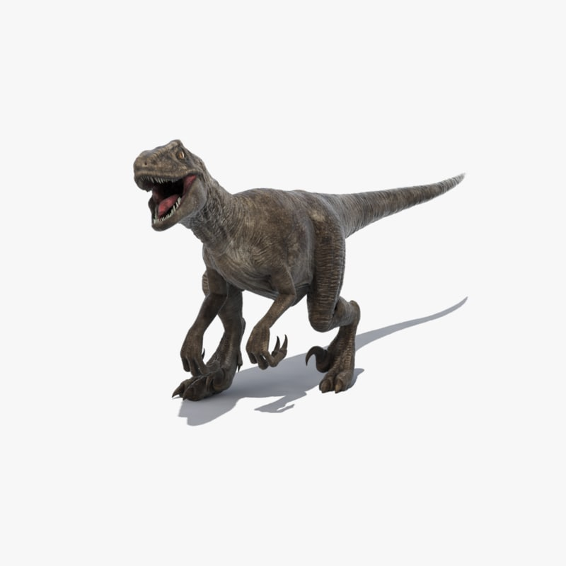 realistic velociraptor raptor animation max