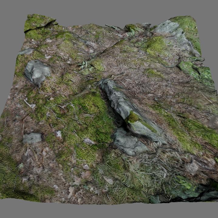 forestground2-render1.jpg
