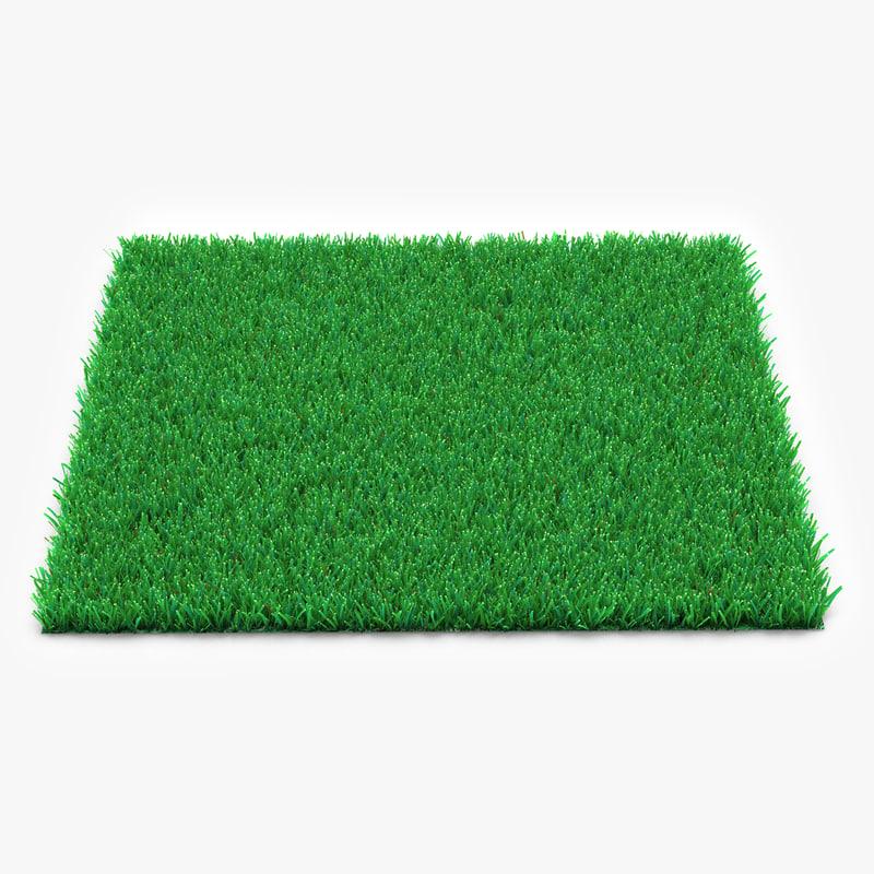 Kentucky Bluegrass Grass vray 3d model 00.jpg