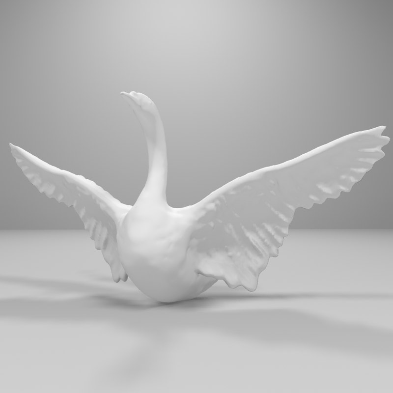 swan0000.jpg