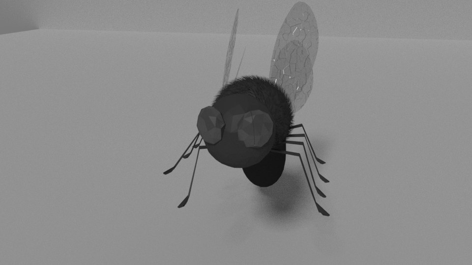 fly3.png