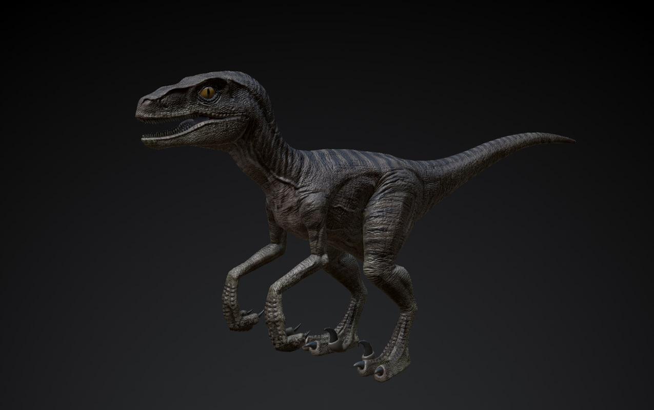 Raptor_01.jpg