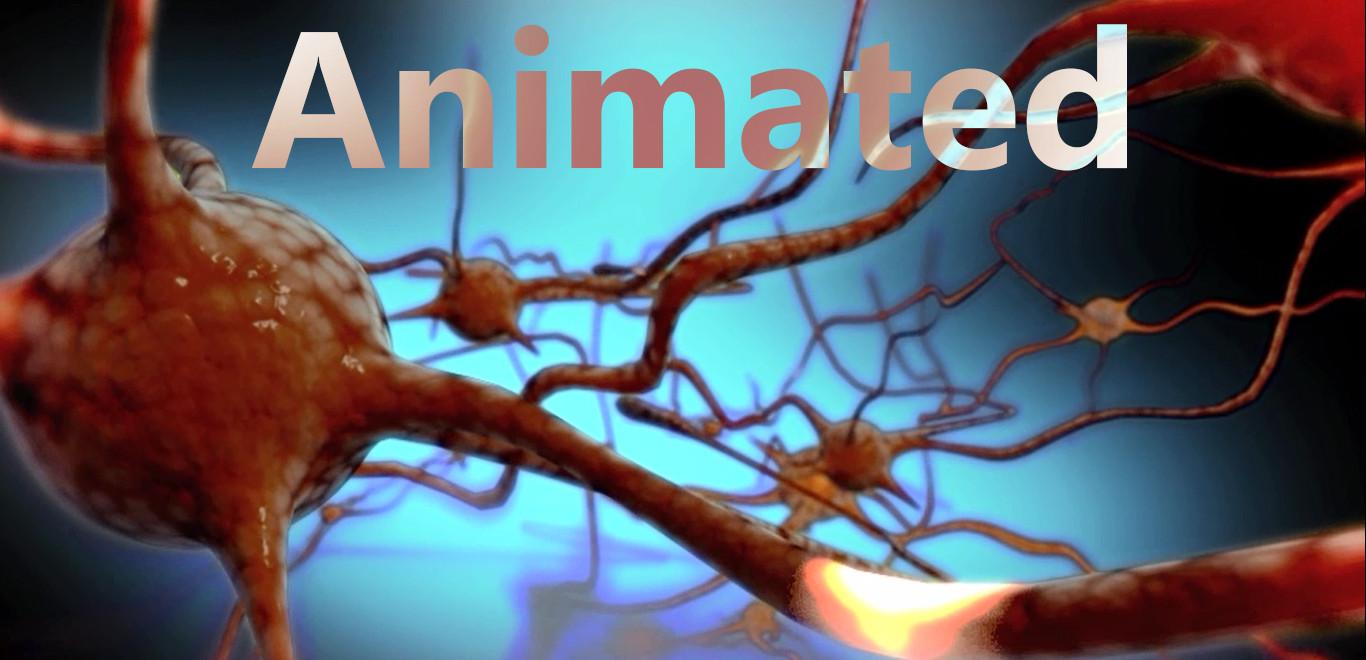 Animated.jpg