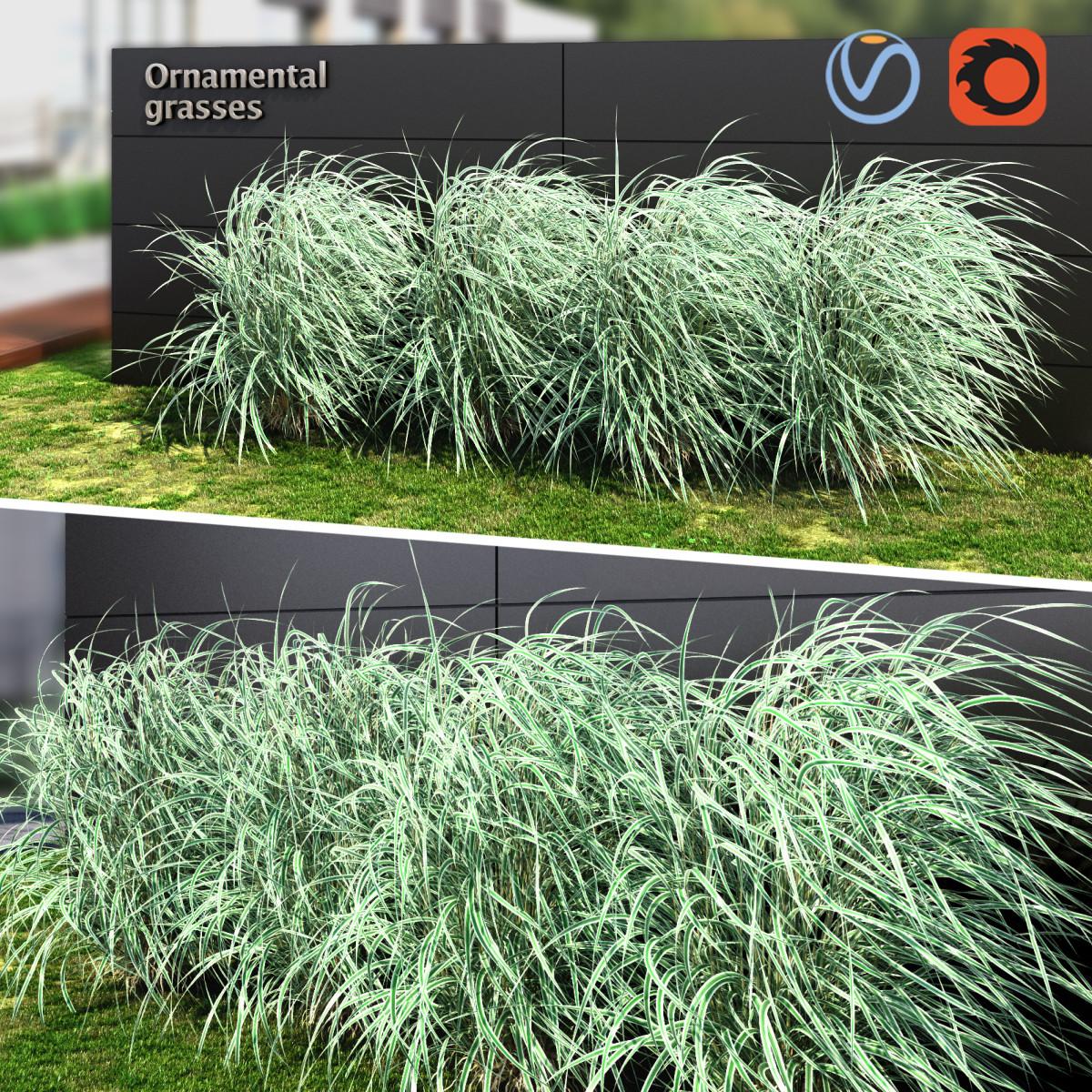 preview_grass_striped_01.jpg