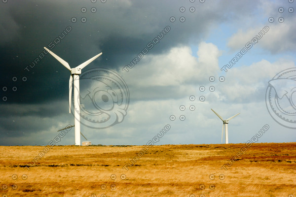 Wind electric generator
