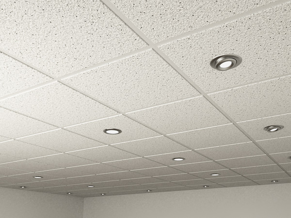 Ceiling tile and Spot Lights.max 3D Models