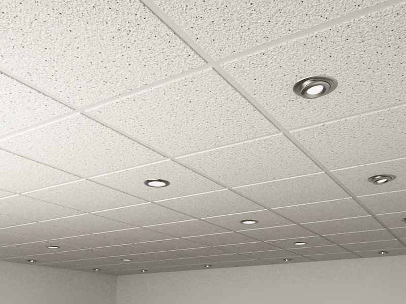 Ceiling Tile Image copy.jpg
