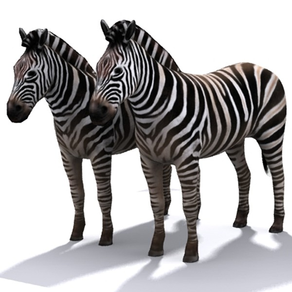 zebra 3d max - zebra_max.zip... by David Penfound